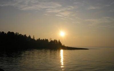 sunrise, summer, and contemplating AllieCat