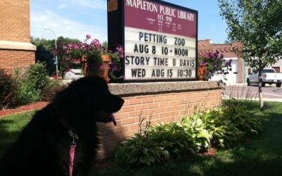 Storytime at Mapleton Public Library